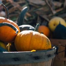 Six Fabulous, Yet Frivolous, Ways to Decorate for Fall